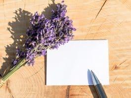 Une carte et un stylo
